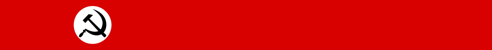 National Bolshevik Party